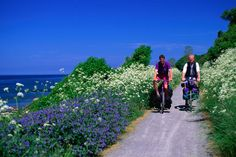 Cycling the great trails near Hasle in Bornholm, Denmark