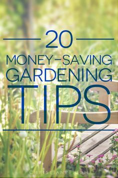 20 #gardening tips from Pinterest for those on a budget...  http://christianpf.com/?p=14606  Pinned 4200 times