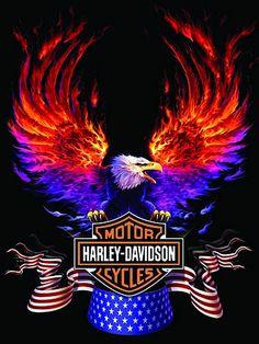 harley davidson logo | Old Harley Davidson Logo 6973 Hd Wallpapers in Logos…