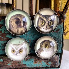 I'd like to show you some paperweights and magnets I designed . .