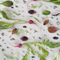 Food collage via Julie's Kitchen