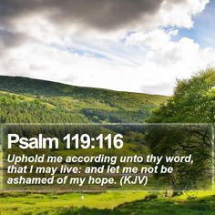 Psalm 119:116 Uphold me according unto thy word, that I may live: and let me not be ashamed of my hope. (KJV)  #Spiritual #Pastor #Meditation #Christ #Evangelism #DailyBible #PhotoOfTheDay http://www.bible-sms.com/