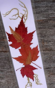 This listing is for ONE PRESSED FLOWER BOOKMARK. You will get the bookmark that is pictured.   These stunning bookmarks are created from my palette of flowers, fall leaves and other natural botanical finds from my gardens and in the wild throughout Maine. Feel the Maine experience each time you use one of my signature bookmarks. Each bookmark measures 2 3/8 inches by 8 1/2 inches. They are laminated to last for years.    They make great gifts or a little something to treat yourself…