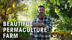 A tour of Limestone Permaculture Farm in New South Wales, Australia. Brett Cooper manages the property as a productive farm helping to feed around 50 . Agriculture, Farming, Market Garden, Grow Your Own Food, Farm Gardens, Permaculture, Garden Inspiration, Acre, Tours