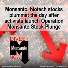 "Last Thursday, the Nasdaq composite, which is weighted heavily toward tech and biotech companies, had its worst day since November 2011,"" reported the Associated Press, less than 24 hours after the launch of Operation Monsanto Stock Plunge.  Read more at NaturalNews.com http://bit.ly/1qBrQip  Watch the Organic Spies video:  http://youtu.be/ovCrpTcfF3M  Take action here: http://bit.ly/1lD1Q6G Food Democracy Now!"
