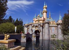 I never thought I would become the Disneyland fanatic people came to for Disneyland tips. It just