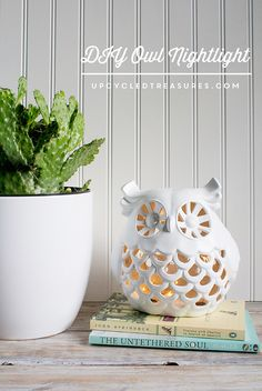 See how easy it is to create this DIY Upcycled Owl Nightlight using battery operated string lights! upcycledtreasures.com