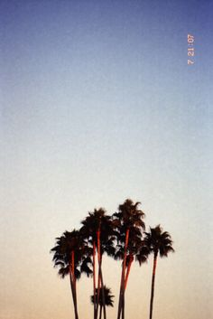 California love by our ladies who run the Quiksilver Women' sTumblr.