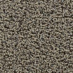 Looptex Mills Invincible Frieze Carpet 12 Ft Wide At