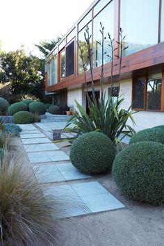 Women In Design: Landscape Designer Fiona Brockhoff Country Landscaping, Modern Landscaping, Outdoor Landscaping, Landscaping Design, Landscape Architecture Design, Garden Landscape Design, Modern Landscape Design, Australian Native Garden, Australian Houses