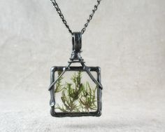 real plant necklace, botanical, dried plant, terrarium necklace, real moss necklace, handmade by pentaxPL on Etsy