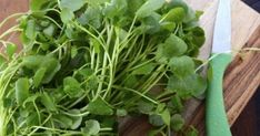 Heath Benefits and Nutrition Facts of Watercress Health Benefits, Health Tips, Natural Spring Water, Green Plants, Diet And Nutrition, Superfood, Turmeric, Allrecipes, Celery