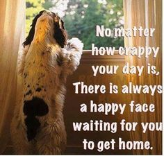 This could not be more true!  No matter what kind of day I have seeing how excited Max and Morris are to see me instantly turns my day around :)