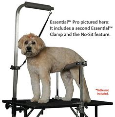 Groomers Helper Essential Pro Set with Large Clamps ** Additional details at the pin image, click it (This is an amazon affiliate link. I may earn commission from it)