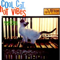 Dennie Poole Jazztette Cool Cat Hot Vibes LP Record Album Cover With Cat Artwork