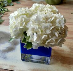 Simple and sweet hydrangea