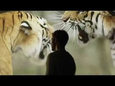 WWF - What the world needs now is love