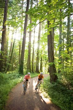 Mountain Biking Trails - Always remember to protect our trails by following easy invasive species prevention steps. www.playcleango.org