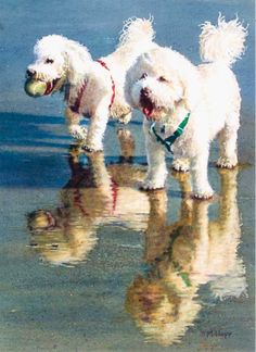 Beach Buddies (transparent watercolor on paper, 16×12) by Mary Hopf, featured in the Dogs chapter of Art Journey Animals. #AnimalsInArt #dogs