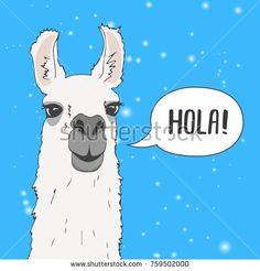 Funny Lama Alpaca portrait with snow and blue background. Greeting card with hand written Hola (Hello in Spanish). Cute Vector Animal illustration for design flayer, poster,  banner, t-shirts, etc.