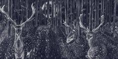 The Secret World of Great Britain's Nocturnal Wildlife The Secret World, Nocturnal Animals, Antique Shops, Book Design, Animal Pictures, Deer, Fine Art Prints, Wildlife, Ink