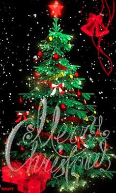 Merry Christmas & Happy New Year ! Merry Christmas Animation, Animated Christmas Tree, Merry Christmas Pictures, Merry Christmas Quotes, Vintage Christmas Images, Christmas Scenes, Christmas Wishes, Christmas Art, Christmas Greetings