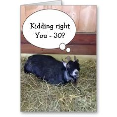 GOAT SAYS=KIDDING RIGHT? YOU CAN'T BE OVER THE HILL COMICAL CARDS