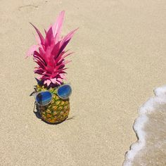 painted pineapple, b