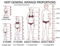 Proportions for drawing people