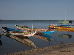 Voyage dans le Sine Saloum au Sénégal
