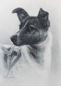 Рисунок собаки Лайка Космонавт