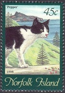Catus, Kite, Cat Art, Postage Stamps, Cat Lovers, Dog Cat, Norfolk Island, Collage, Cat Things