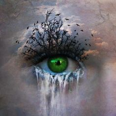 Creative. To make the lashes trees and the water falling out of the eyes is creative. Also the art is not overpowering so you can still see the human eye.