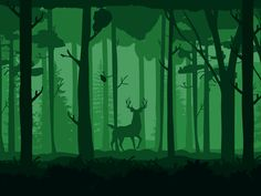 Landscape Animation by Fiona Mares - Dribbble