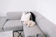 · Atmosphere · Sakte men sikkert begynner ting å falle på plass her hjemme, og jeg er spesielt fornøyd med stuen akkurat nå. Grønne, eksotiske planter gir liv til leiligheten, den fine boilaskjenken setter prikken over i'en, gulvteppet gir en lun og koselig følelse, de myke putene og pleddet i sofaen.. Ikke minst den sorte lykten jeg kjøpte for …