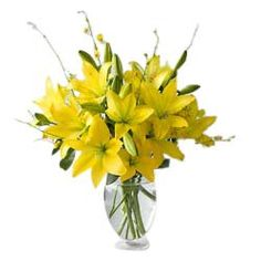 Send Flowers to Chennai Send Flowers, All Flowers, Types Of Flowers, Online Flower Delivery, Online Florist, Funeral Flowers, Flowers Online, Do Anything, Chennai