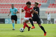 Benfica nascidos para vencer Soccer Stars, Football, Running, Wallpaper, Pretty, Sports, Soccer, Hs Sports, Futbol