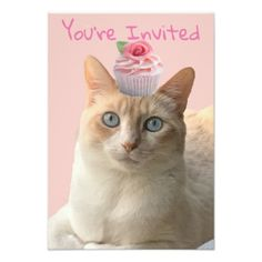 Pink cupcake cat invitations single page - birthday cards invitations party diy personalize customize celebration