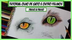 Como desenhar Olho de Gato e outros Felinos - Passo a Passo (How to draw...
