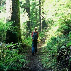 Hike Oregon - @Charlène Simon Simmons don't mind if we do!