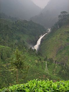 Attukal Waterfall, Munnar, India                                                                                                                                                                                 More