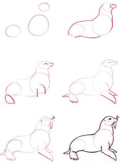 Drawings Learn to draw: Seal - Graphic / Illustration - Art Tutorial - Animal Sketches, Animal Drawings, Drawing Sketches, Drawing Ideas, Pencil Drawings, Easy Animals, How To Draw Animals, Art And Illustration, Cartoon Illustrations