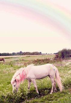[Fashion Editorial] « My Little Pony » de Katrine Rohrberg