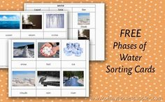 Free Phases of Water 3-Part Cards from The Pinay Homeschooler