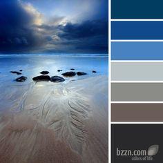 color palette - wonder