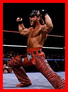 Shawn Michaels The Wrestler of The Men's Wrestling, Wrestling Superstars, Wwe Shawn Michaels, The Heartbreak Kid, Wwe Pictures, Braun Strowman, Stone Cold Steve, Steve Austin, Body Reference