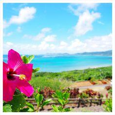 沖縄が大好きです Okinawa Japan, Japan Japan, Japan Landscape, Nature Activities, Sky Sea, Ocean Beach, Natural Beauty, Tourism, Flowers