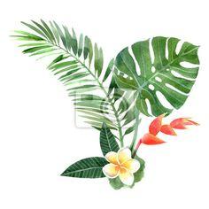 Sticker (adesivo murale) piante tropicali acquerello
