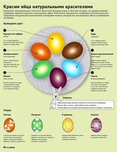 натуральные красители для яиц на пасху в домашних условиях: 14 тыс изображений найдено в Яндекс.Картинках