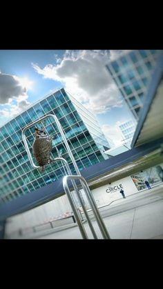 brunoboeing787 • O-Ton Zurich, Louvre, Building, Travel, Clay, Construction, Trips, Buildings, Viajes